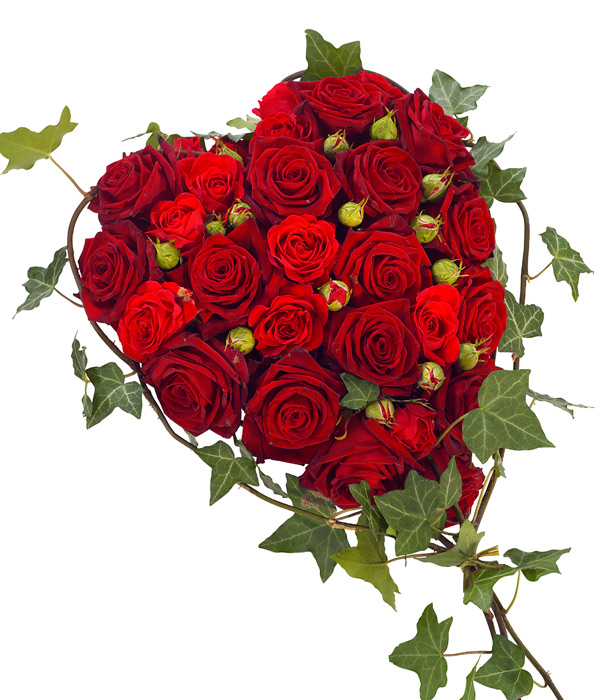 Red rose heart fioritalia florists edinburgh - Pics of roses and hearts ...